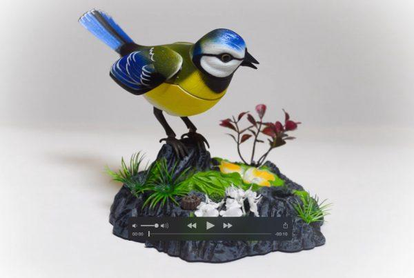 PH418 Beautiful Bird